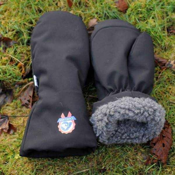 Image of BEAR - wool mittens/softshell outer